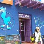 Foto de Blue Llama