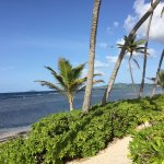 Beautiful time in St. Croix and the Palms at Pelican bay made it so much so.
