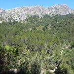 Naturpark Puig de Galatzó