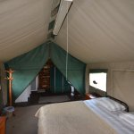 Boendet under tented camp