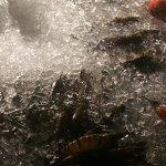 Photo of De'Fish Seafood Restaurant
