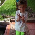 iguana in background near fish area, grandson