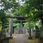 Aoyama Cemetery walking distance to the hotel is a peaceful place to stroll