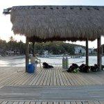Photo de El Galleon Beach Resort & Hotel