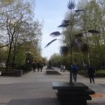 Пальма Мерцалова - символ Донецка - на бульваре Пушкина