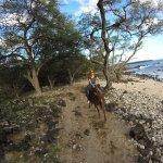 The shoreline trail.