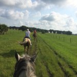 Quiet, peaceful resort with airboat rides, horseback riding, swamp buggy tours, archery, skeet a