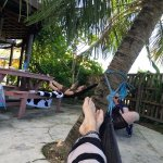 Hammocks and outdoor area