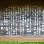 Hijikata Toshizo Saigo no Jihi Foto
