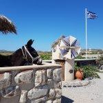 Santorini Best Tours by Omega Travel
