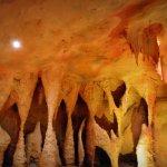 Photo de Glow Worm Caves