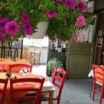Photo of La Chianina