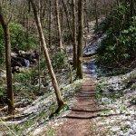 Snow on Rock Creek Falls Trail
