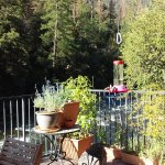 Yosemite Blue Butterfly Inn. Breakfast on the deck.