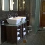 Delux feature bathroom