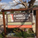 Photo of Taverna Ambrosia