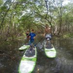 Stand-Up Paddleboarding