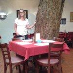 La Placita's Tree!