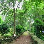 Garten bzw. Parkbereich