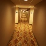 Foto de Hampton Inn Chicago-O'Hare International Airport