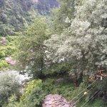 Photo of Hotel Dream River