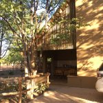 Shingwedzi rest camp. Accommodation, food and plants