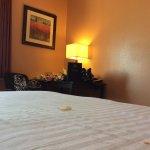 Photo de BEST WESTERN Topeka Inn & Suites