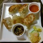 Foto Potstickers Asian Grill