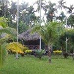 Eco huts