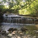 Chase Lake Falls