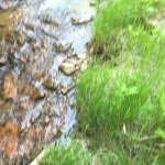 A slow moving, shallow, cool stream to rest your feet!