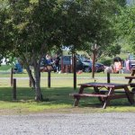 Picnic tables are available for those that want a more open area