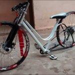 Foto di Paseos en Bicicleta Bike Tours