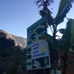 Foto de Paraiso Las Palmeras Lodge
