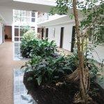 Pflanzen im Korridor