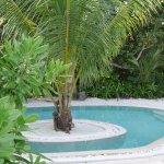 Hytte pool