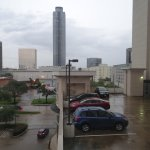 Foto de Homewood Suites Houston near the Galleria