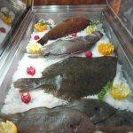 Pescado fresco de la Costa Brava