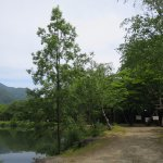 Komagaike