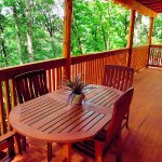 Spacious Covered Decks in the Treetops!