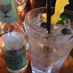 The D'Arcy Thompson - Hendrick's gin and elderflower tonic