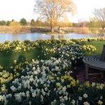 Rabbit Hill Farm, Sawyer, Michigan