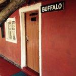 Buffallo House