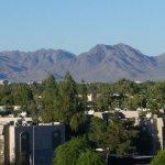 Embassy Suites by Hilton Phoenix-Scottsdale Picture