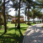 Obraz Pandanus Resort
