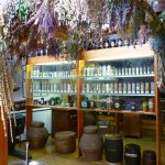 Pharmacy Museum - attic - drying room for medicinal plants