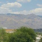 Homewood Suites by Hilton Tucson/St. Philip's Plaza University Foto