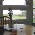 View from the kitchen table in #3