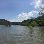 Carvins Cove Natural Reserve