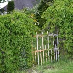 gate on side of property